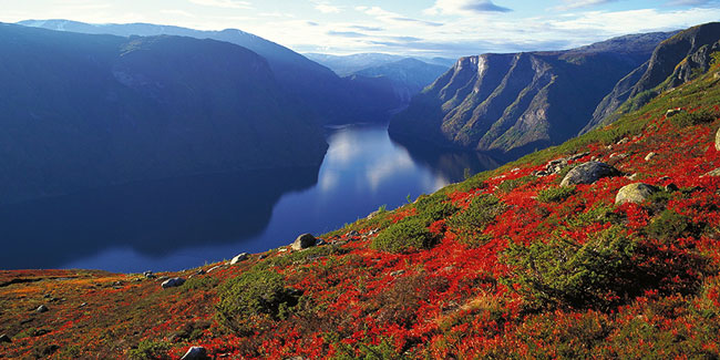 NOR-indian-summer:© Frithjof Fure:www.fjordnorway.com